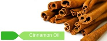 cinnamon oil all you wanted to know