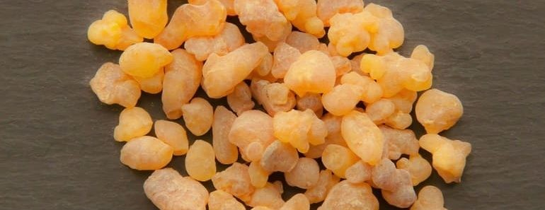 frankincense-essential-oil-for-anti-aging