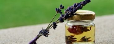 lavender-oil-uses-and-benefits